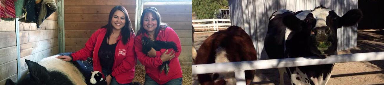 Animal Welfare Initiatives